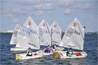 Cayman Islands Sailing Coach - Laser, Opti and C420