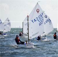 Sailing Coach/Instructor